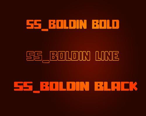 Boldin Typeface