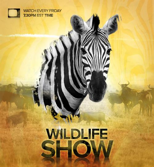Wild Life Tv Show Poster