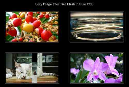 Sexy Image effect like Flash In pure CSS3