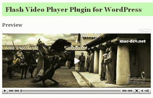 flash-video-player-wordpress-plugin