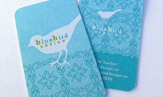 bluebird-design