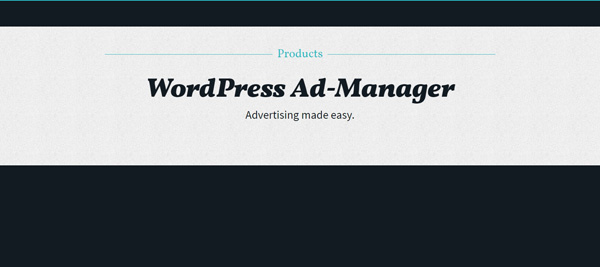 wordpress ad manager