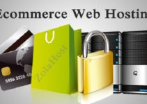 E Commerce Web Hosting