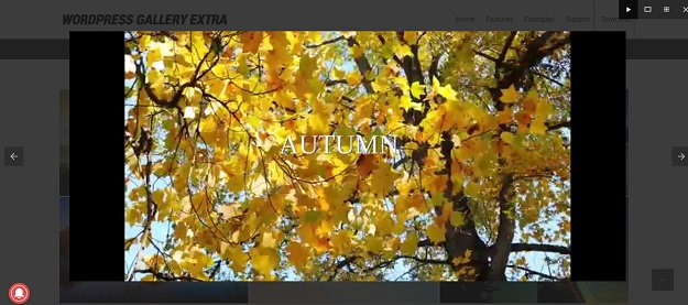 wordpress audio video gallery support